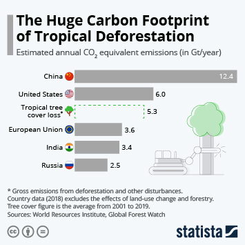 Link to The Huge Carbon Footprint of Tropical Deforestation Infographic