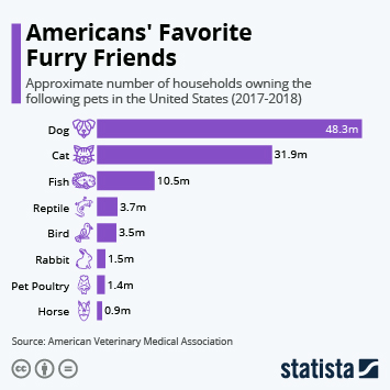 Infographic: Americans' Favorite Furry Friends   Statista
