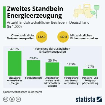 Infografik: Zweites Standbein Energieerzeugung   Statista