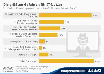 Infografik: Die größten Gefahren für IT-Nutzer | Statista