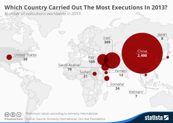 Infographic - the number of executions worldwide in 2013