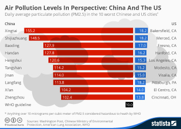 Infographic - Air Pollution Levels In Perspective