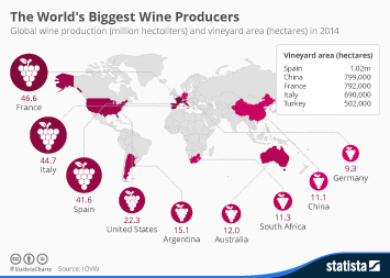 Infographic - The Worlds Biggest Wine Producers