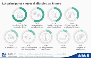 Infographie - Les principales causes d'allergies en France