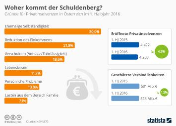 Infografik - Gründe für Privatinsolvenzen in Österreich