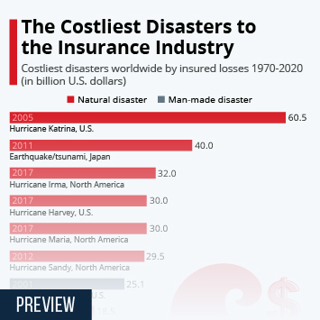 Infographic - Costliest Man-Made Disaster