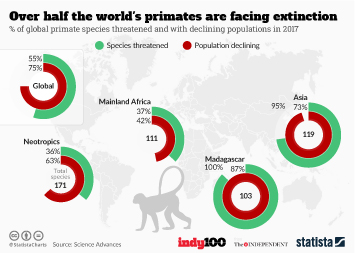 Infographic - Over half the world's primates are facing extinction