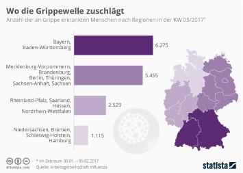 Infografik - Bayern besonders von Grippe betroffen