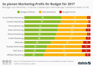 Infografik - So planen Marketing-Profis ihr Budget