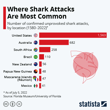 The World's Shark Attack Hotspots