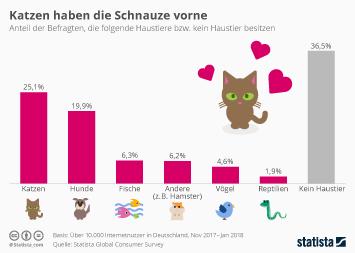 Infografik - Die beliebtesten Haustiere der Deutschen