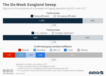 Infographic - arrests during anti-gang operation ICE HSI 2017 united states