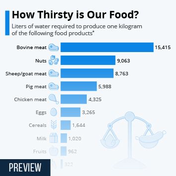 Infographic - How Thirsty is Our Food?