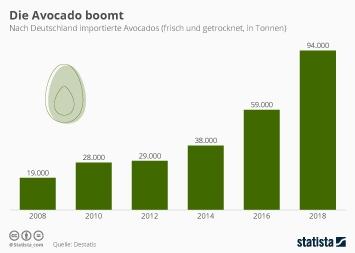Infografik - Deutschland importiert immer mehr Avocados