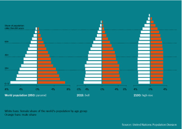 Population in China Infographic - From Pyramids to Skyscrapers