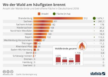 Naturkatastrophen Infografik - Waldbrände in Deutschland