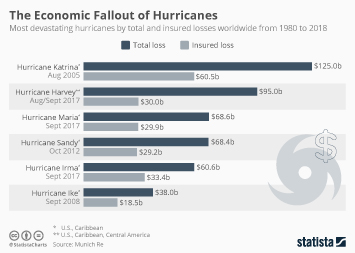 Insured Catastrophe Losses Infographic - The Economic Fallout of Hurricanes