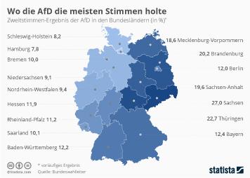 Wo die AfD die meisten Stimmen holte