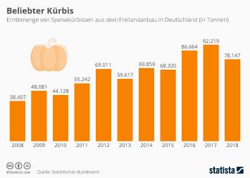 Landwirtschaft Infografik - Mehr als Halloween-Deko: Kürbisboom in Deutschland