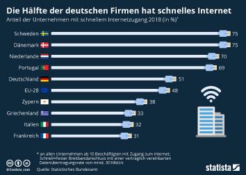 Internetnutzung in Europa Infografik - Die Hälfte der deutschen Firmen hat schnelles Internet