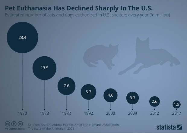 Chart: Pet Euthanasia Has Declined Sharply In The U S  | Statista