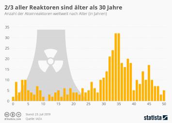 Alternde Reaktoren