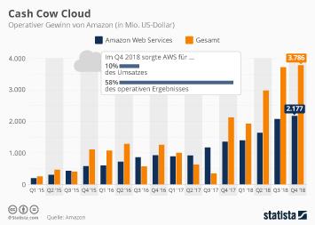 Amazon Infografik - Cloud Service bleibt Amazons Haupteinnahmequelle