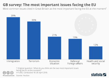 European Union Infographic - The most important issues facing the EU