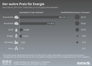 Energieeffizienz Infografik - Der wahre Preis für Energie