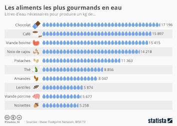 Eau potable : approvisionnement, consommation et assainissement Infographie - Les aliments les plus gourmands en eau