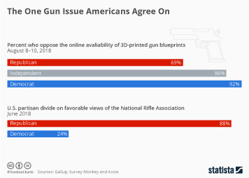 Firearms in the U.S. Infographic - The One Gun Issue Americans Agree On