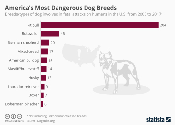 Pets Infographic - America's Most Dangerous Dog Breeds