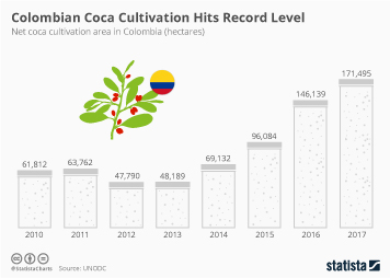 Colombia Infographic - Colombian Coca Cultivation Hits Record Level