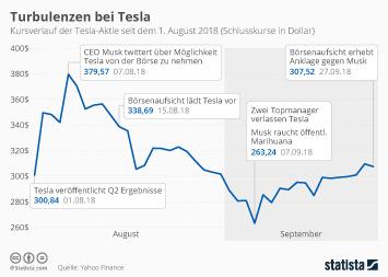 Tesla Motors Infografik - Turbulenzen bei Tesla