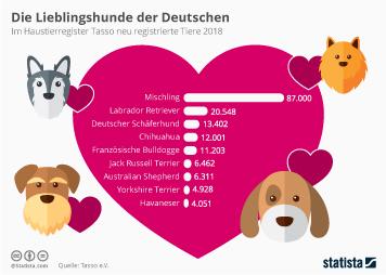 Haustiere in Deutschland Infografik - Die Lieblingshunde der Deutschen