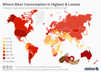 Where Meat Consumption Is Highest & Lowest
