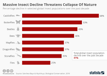 Global Climate Change Infographic - Massive Insect Decline Threatens Collapse Of Nature