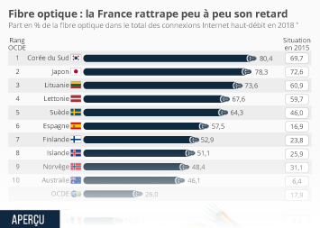 La fibre optique en France Infographie - Fibre optique : la France rattrape peu à peu son retard