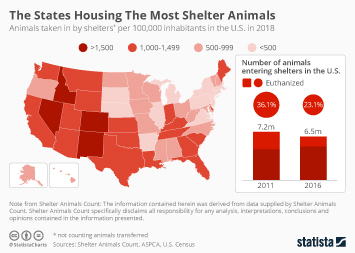 Fewer Pets End up in Shelters in the U.S.