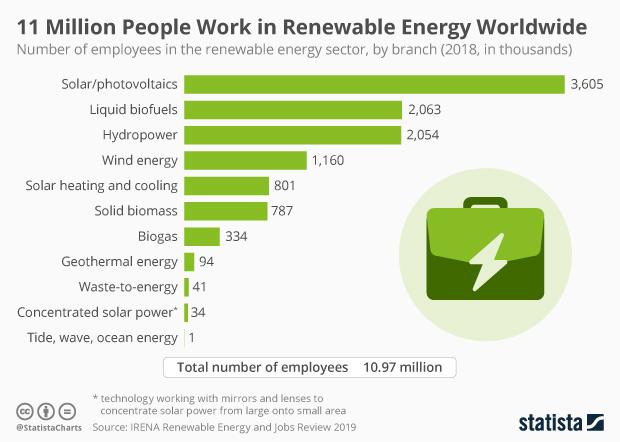 renewable energy employment worldwide by branch