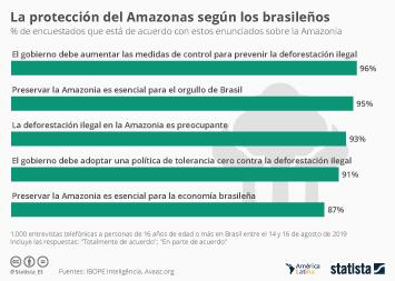 Brazil Election 2018 Infographic - Los brasileños demandan a Bolsonaro más medidas sobre el Amazonas