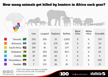 How many animals get killed by hunters in Africa each year?