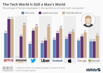 Workforce diversity at online companies Infographic - The Tech World Is Still a Man's World