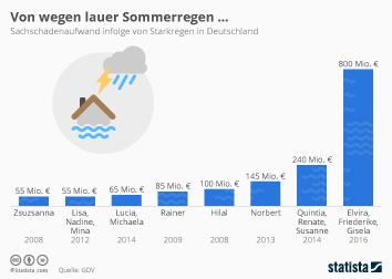 Naturkatastrophen Infografik - Von wegen lauer Sommerregen