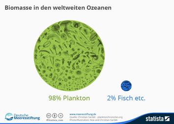 Biomasse in den weltweiten Ozeanen