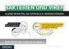 Bakterien und Viren im Haushalt