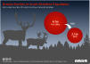 estimated number of tundra caribou and wild reindeer