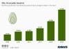 Deutschland importiert immer mehr Avocados