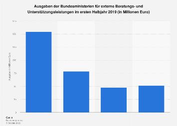 Ausgaben der Bundesministerien für Berater und externe Unterstützungsleistungen 2019