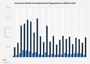 Waldbrände in Brasilien bis 2019